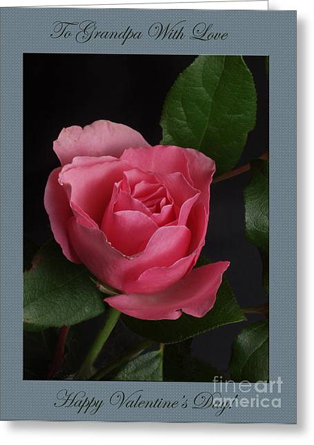 Photography By Govan. Vertical Format Greeting Cards - Valentine Rose  Grandpa Greeting Card by Andrew Govan Dantzler