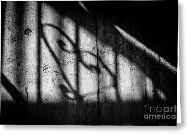 Shadowplay Greeting Cards - Valentine - Some Kinds of Love Greeting Card by Dean Harte