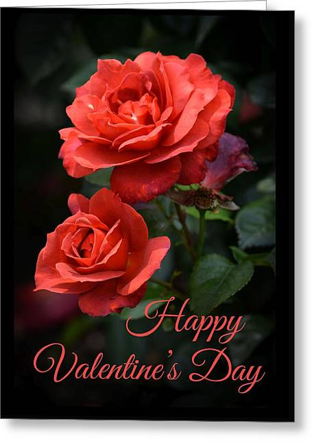 Hot Cocoa Greeting Cards - Valentines Hot Cocoa Roses Greeting Card by Fiona Craig