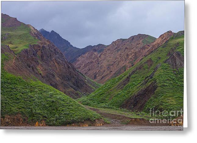 Landscape Framed Prints Greeting Cards - Valley at Denalis Toklat River Greeting Card by Jennifer White