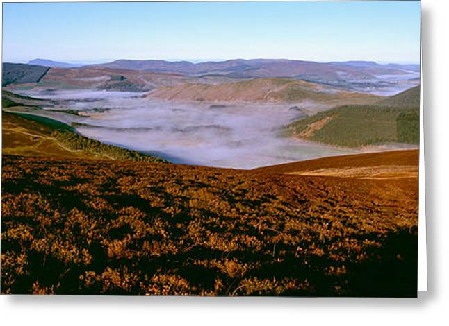 Border Photographs Greeting Cards - Valley At Morning Mist, Cademuir Hill Greeting Card by Panoramic Images
