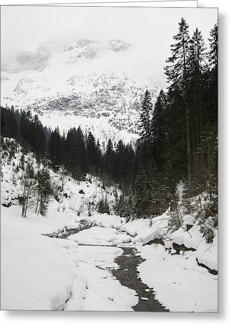 Winterly Greeting Cards - Valley in winter Greeting Card by Matthias Hauser