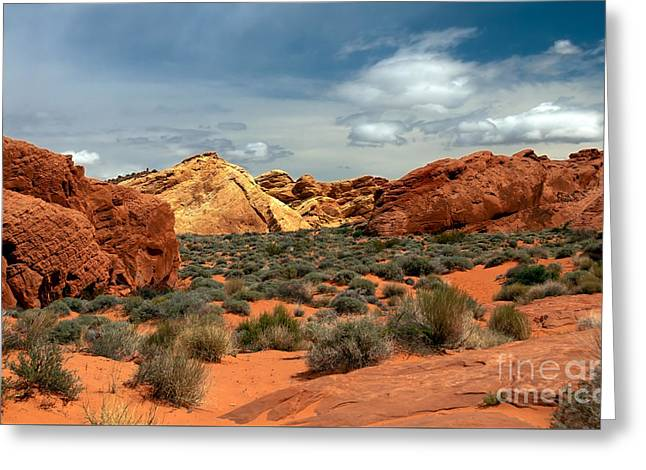 Valley Of Fire Greeting Card by Robert Bales