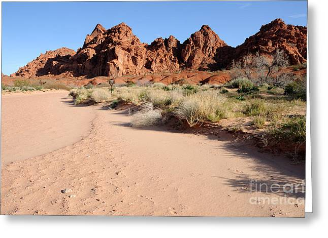 Slickrock Greeting Cards - Valley of Fire Wash Greeting Card by Gary Whitton