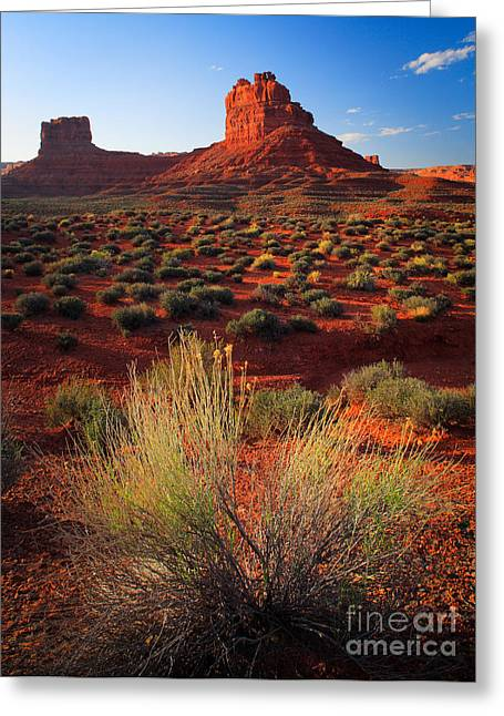 Geology Photographs Greeting Cards - Valley of the Gods Greeting Card by Inge Johnsson