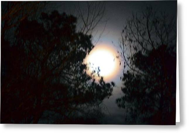 Valley of the Moon Greeting Card by Maria Urso