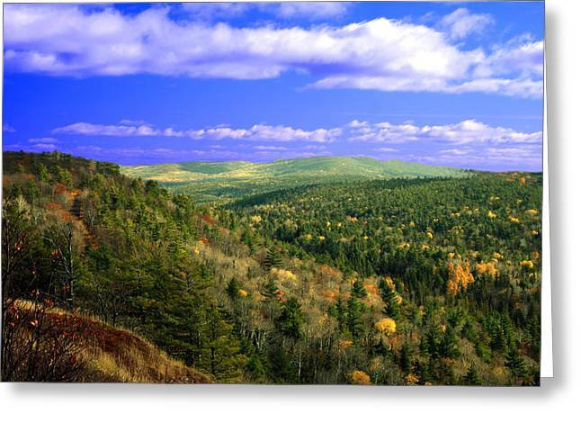 Openness Greeting Cards - Valley of trees Greeting Card by Optical Playground By MP Ray