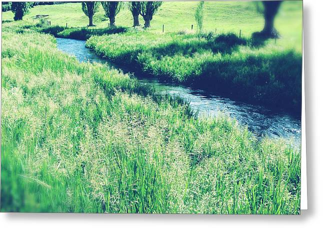 Beautiful Creek Greeting Cards - Valley stream Greeting Card by Les Cunliffe