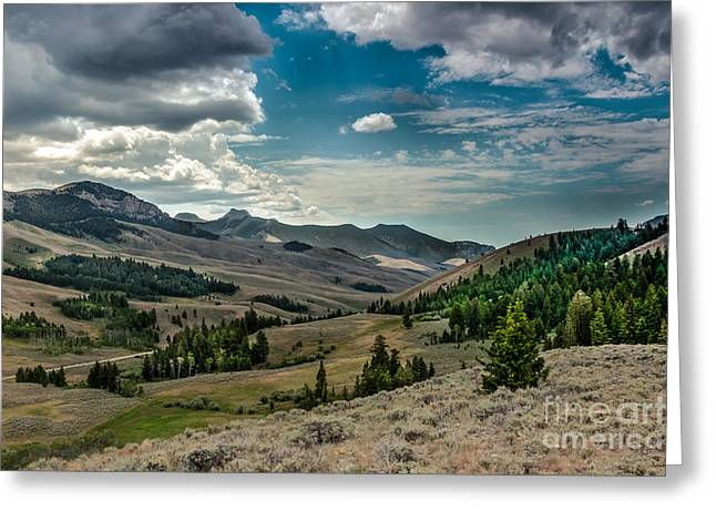 Usa Hikes Greeting Cards - Valley View In The Lost River Moutains Greeting Card by Robert Bales