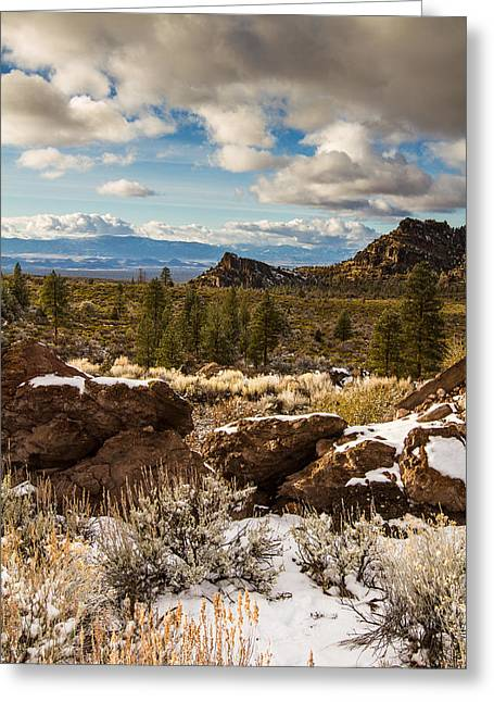 Siskiyou County Greeting Cards - Valley View Greeting Card by Randy Wood