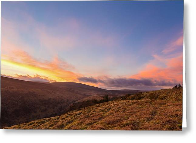 Heathland Greeting Cards - Valleys at sunset in Wicklow Mountains Greeting Card by Semmick Photo