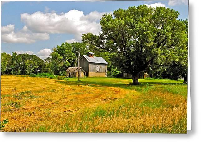 Tin Roof Greeting Cards - Van Gogh Summer Greeting Card by Paul Presnail