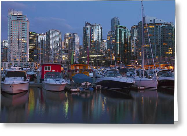 City Lights Greeting Cards - Vancouver BC and yachts at dusk Canada. Greeting Card by Gino Rigucci