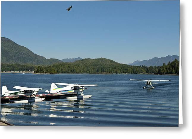 Vancouver Island, Tofino Greeting Card by Matt Freedman