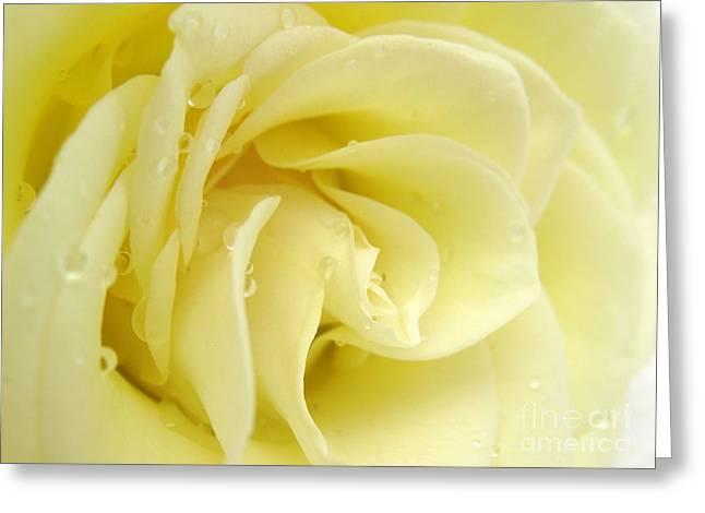 Vanilla Swirl Greeting Card by Patti Whitten