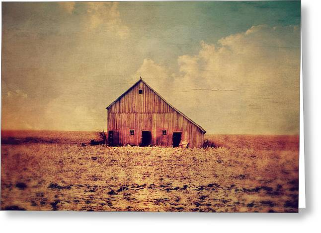 Barn Digital Greeting Cards - Vantage Point Greeting Card by Julie Hamilton