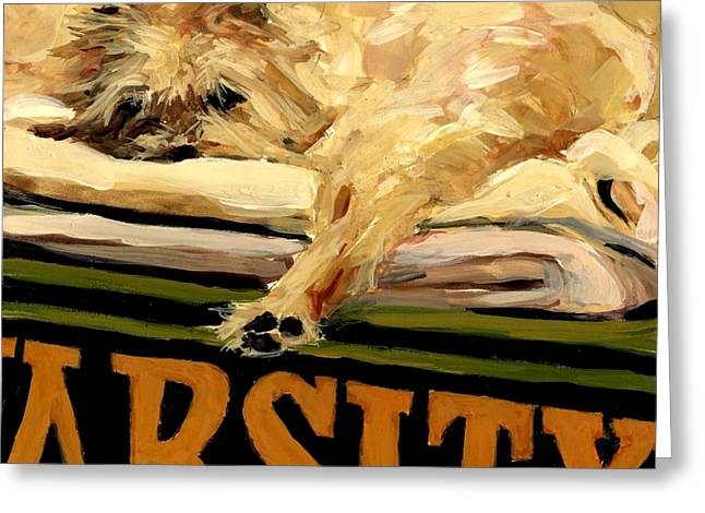 Sleeping Dogs Greeting Cards - Varsity Blanket Greeting Card by Molly Poole