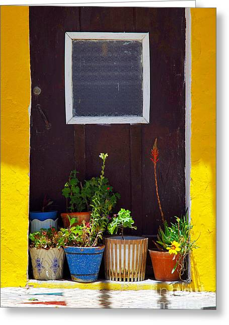 Opening Greeting Cards - Vases on the Doorway Greeting Card by Carlos Caetano