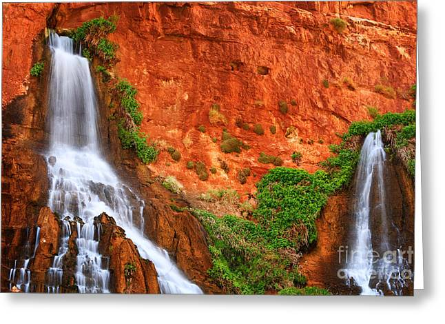 Grand Canyon State Greeting Cards - Vaseys Paradise Twin Falls Greeting Card by Inge Johnsson