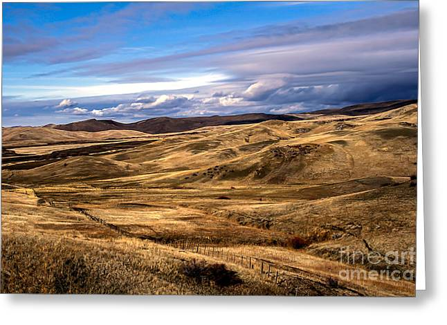 Landsacape Greeting Cards - Vast View of the Rolling Hills Greeting Card by Robert Bales