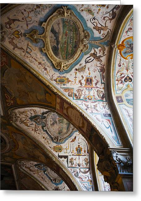 Featured Art Greeting Cards - Vaulted Ceiling Of The Antiquarium Greeting Card by Panoramic Images