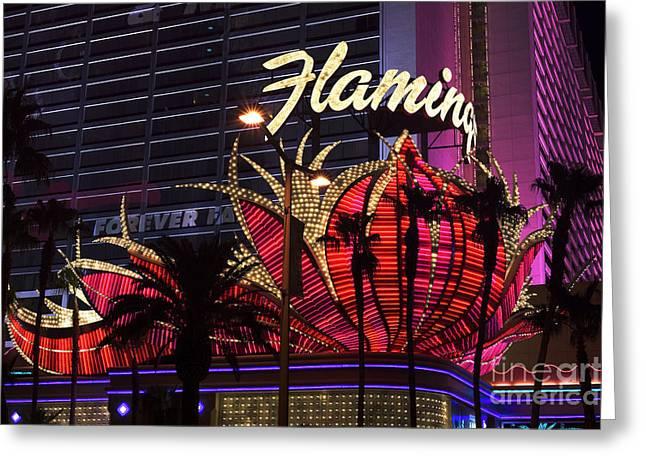 Las Vegas Art Greeting Cards - Vegas Flamingo Greeting Card by John Rizzuto