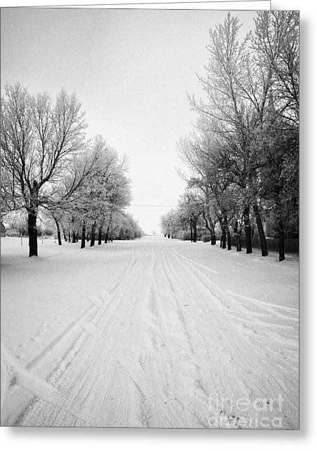 Snow Covered Village Greeting Cards - vehicle tracks on snow covered street in small rural farming community village Forget Saskatchewan C Greeting Card by Joe Fox