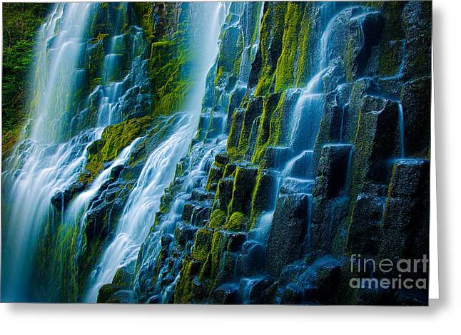 Willamette Greeting Cards - Veiled Wall Greeting Card by Inge Johnsson