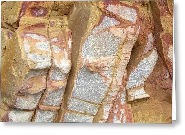 Veined Rock Greeting Card by Barbie Corbett-Newmin