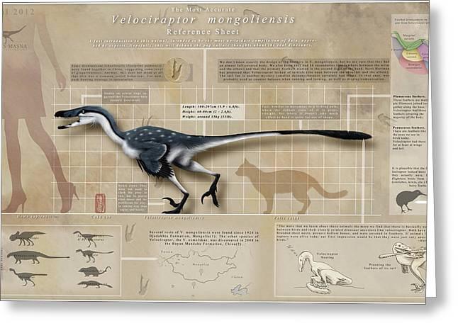 Velociraptor Greeting Cards - Velociraptor Infographic Greeting Card by Christian Masnaghetti