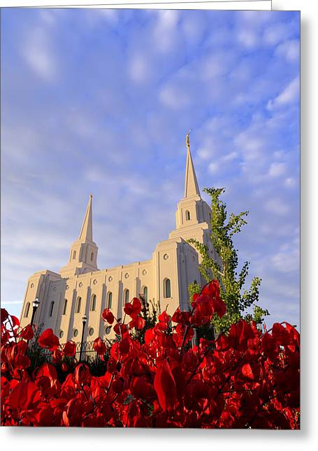 Spires Greeting Cards - Velvet Greeting Card by Chad Dutson