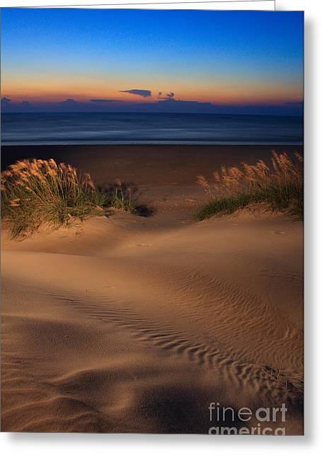 Sea Oats Greeting Cards - Velvet Morning on Pea Island Greeting Card by Dan Carmichael