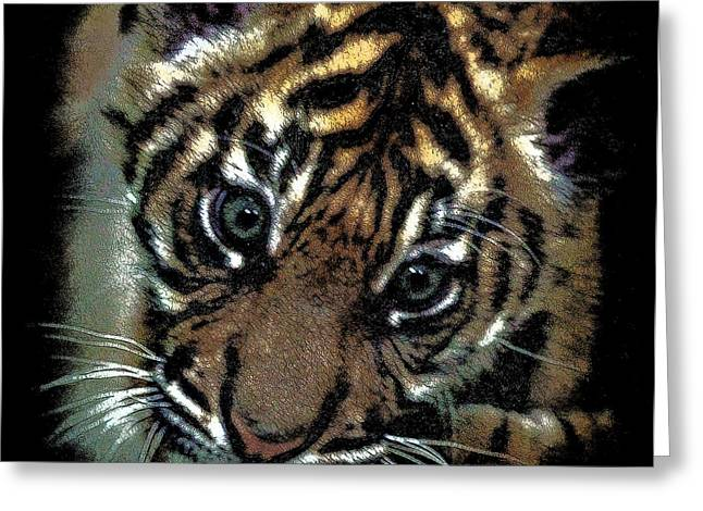 The Tiger Greeting Cards - Velvet Tiger Cub Greeting Card by Athena Mckinzie