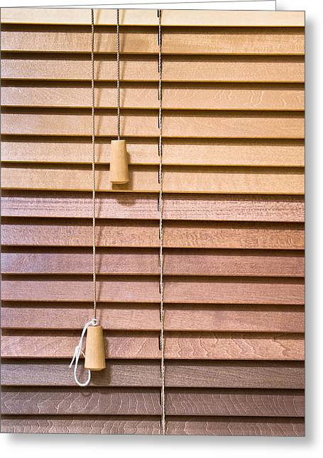 Mahogany Greeting Cards - Venetian blind Greeting Card by Tom Gowanlock