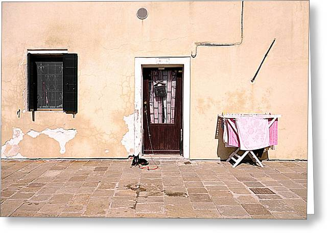 Entrance Door Greeting Cards - Venetian Canine Rest Greeting Card by Valentino Visentini