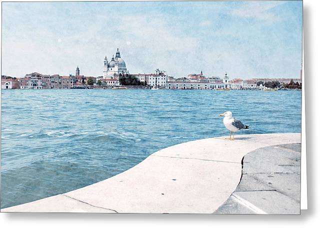 Travel Photographs Greeting Cards - Venetian seagull Greeting Card by Nastasia Cook