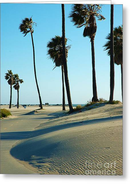 Venice Beach Palms Greeting Cards - Venice Beach 1 Greeting Card by Micah May