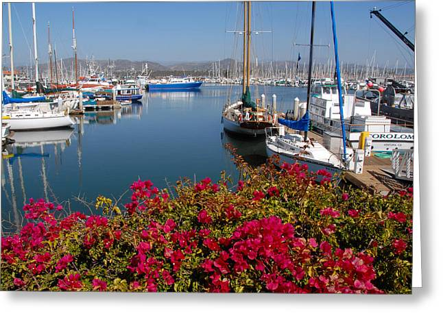 Recently Sold -  - Ventura California Greeting Cards - Ventura Harbor Greeting Card by Lynn Bauer