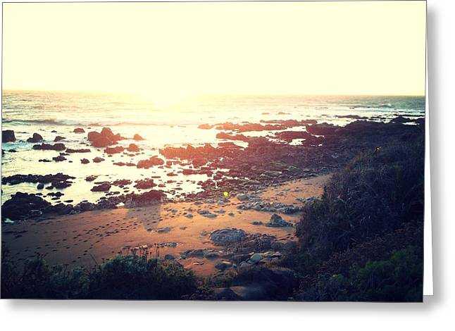 Cambria Greeting Cards - Ventured Path Greeting Card by Steven Alcala