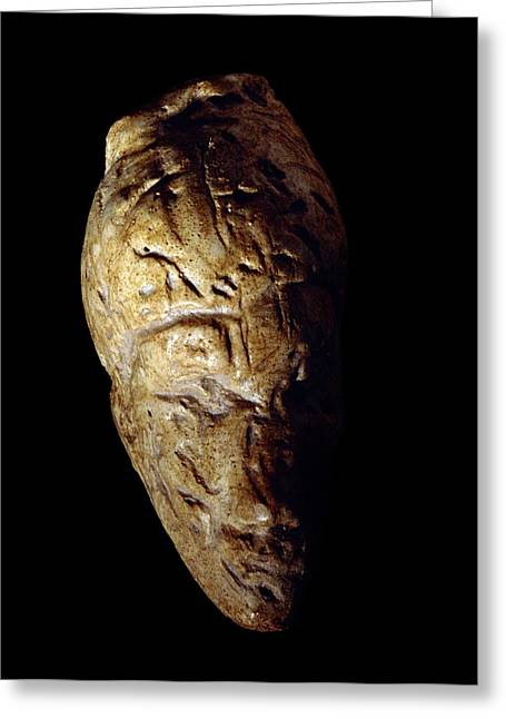 Moravia Greeting Cards - Venus of Dolni Vestonice, Stone Age Greeting Card by Science Photo Library