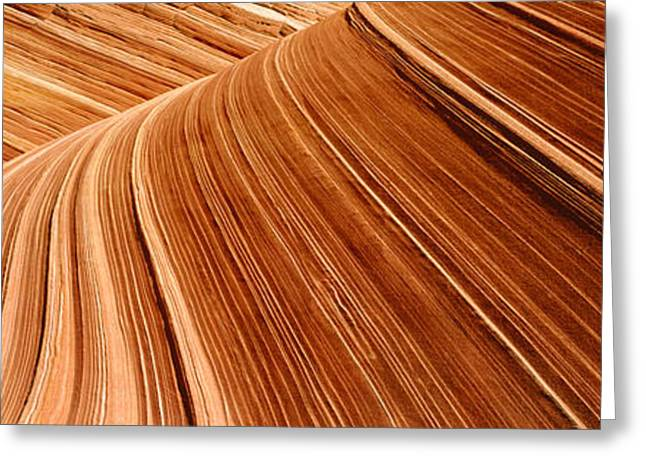 Sand Pattern Greeting Cards - Vermilion Cliffs Paria Canyon Utah, Usa Greeting Card by Panoramic Images