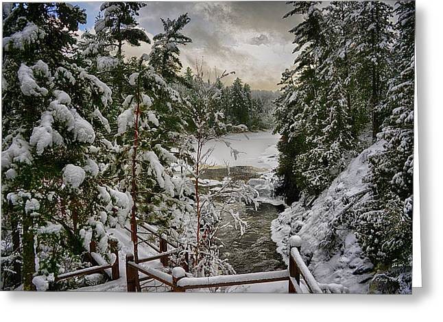 Snow Tree Prints Greeting Cards - Vermilion River Greeting Card by Craig Voth