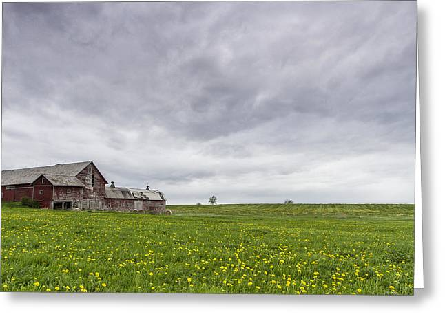 Scenic Drive Greeting Cards - Vermont barn grass dandelion field storm clouds Greeting Card by Andy Gimino