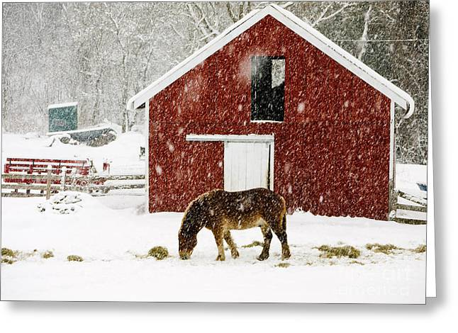 Farm Horse Greeting Cards - Vermont Christmas Eve Snowstorm Greeting Card by Edward Fielding