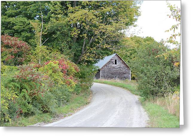 Charlotte Vermont Greeting Cards - Vermont Dirt Road Greeting Card by William Alexander