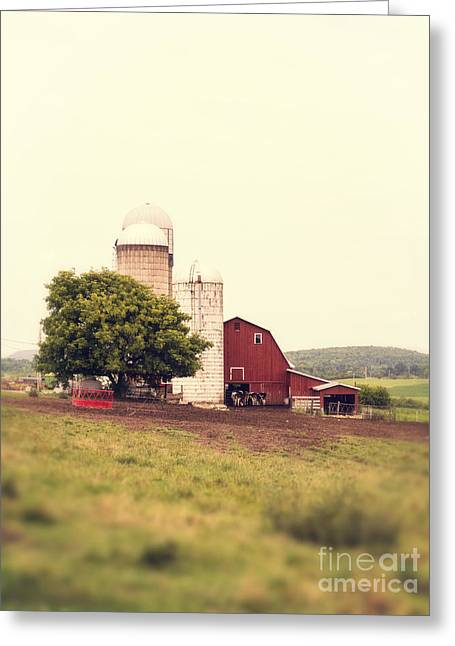 Farming Barns Greeting Cards - Vermont Family Farm Greeting Card by Edward Fielding