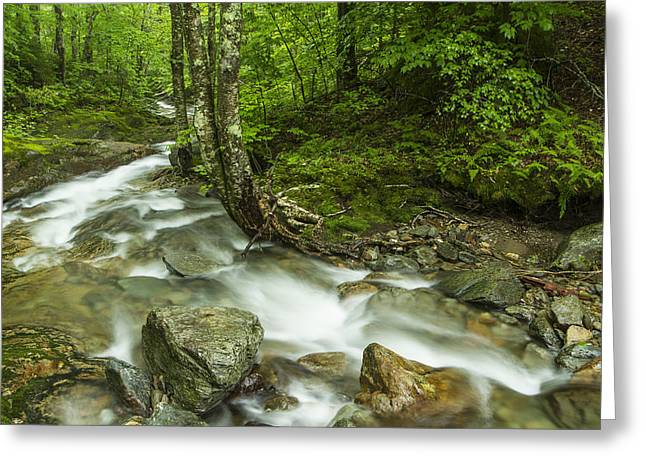 White River Scene Photographs Greeting Cards - Vermont forest river waterfall Mount Mansfield Greeting Card by Andy Gimino