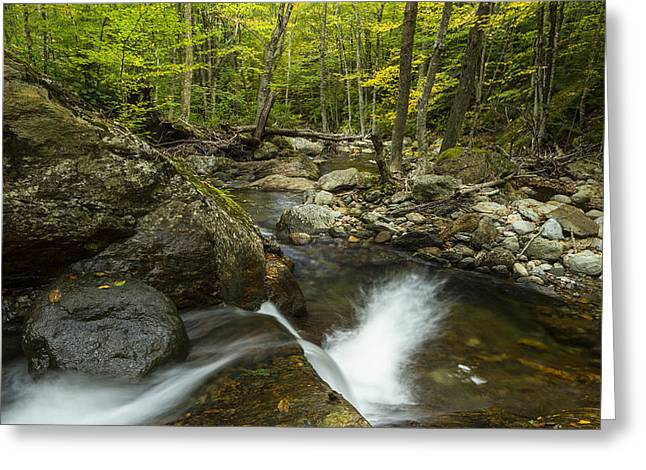 A River In Autumn Greeting Cards - Vermont forest waterfall trees river panorama Greeting Card by Andy Gimino