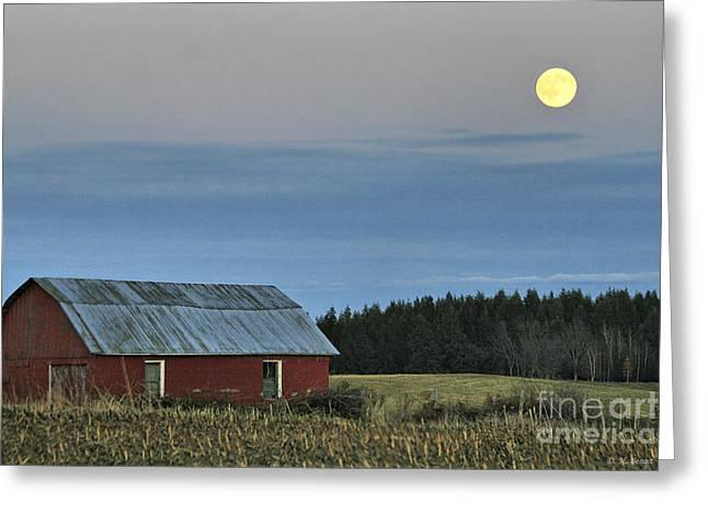 Deborah Benoit Greeting Cards - Vermont Full Moon Greeting Card by Deborah Benoit