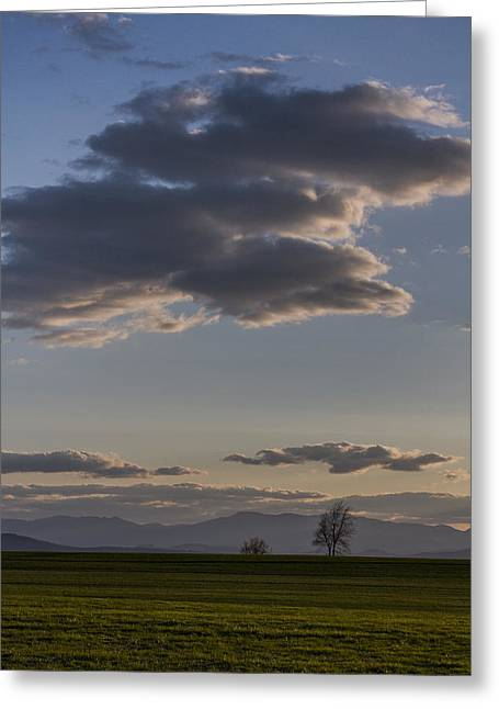 Scenic Drive Greeting Cards - Vermont Grass field trees clouds Adirondack Mountains New York Greeting Card by Andy Gimino